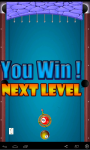 Billiard Bubble Play screenshot 6/6