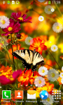 Butterflies Live Wallpapers screenshot 4/6