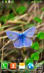 Butterflies Live Wallpapers screenshot 5/6