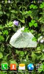 Butterflies Live Wallpapers screenshot 6/6