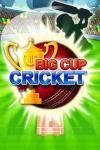 Big Cup Cricket screenshot 1/1