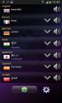 Multi-Language Translator screenshot 3/6