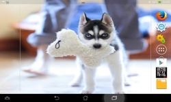 Cute Dogs HD Live screenshot 4/6