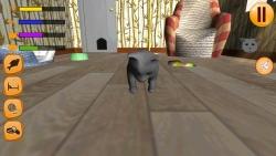 Virtual Cat 3D screenshot 2/3