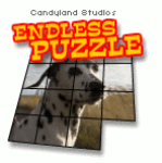 Endless Puzzle screenshot 1/1