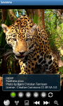 Zoo : Savanna Wild Animals screenshot 1/6