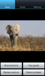 Zoo : Savanna Wild Animals screenshot 6/6
