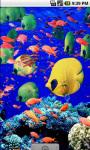 Aqua Underwater Live Wallpaper screenshot 1/4