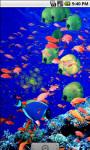 Aqua Underwater Live Wallpaper screenshot 2/4