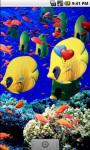 Aqua Underwater Live Wallpaper screenshot 3/4