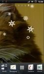 Cute Little Cat Live Wallpaper screenshot 3/3