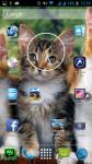 Free Cute Cat Wallpapers screenshot 6/6