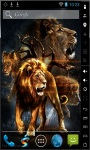 Amazing Lions Live Wallpaper screenshot 2/2
