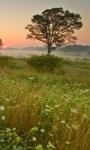 Beautiful Nature Views HD Wallpaper screenshot 2/6