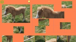 Horse Puzzle For Kids screenshot 4/4