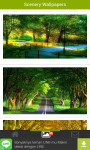 Scenery Wallpapers screenshot 3/4