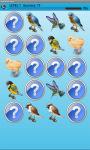 Small Birds Memory Game Free screenshot 3/4