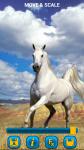 Horses Wallpapers free screenshot 3/6