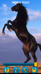 Horses Wallpapers free screenshot 4/6