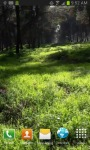 Nature Live Wallpaper 4 screenshot 2/3
