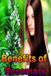 Benefits of Rosemary screenshot 1/3