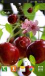 Berry Cherry Live Wallpaper screenshot 2/2