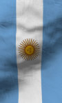 Argentina flag Free screenshot 5/5