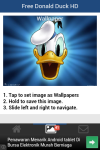 Free Donald Duck HD Wallpaper screenshot 4/5