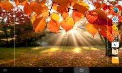 Fall Wallpaper Live screenshot 1/6