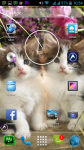 Free Download Cats Wallpaper  screenshot 6/6