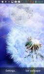 Dandelions LWP screenshot 5/6