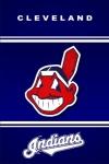 Cleveland Indians Fan screenshot 2/4