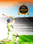 Professional Cricket-2014  screenshot 1/4