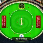 Professional Cricket-2014  screenshot 2/4