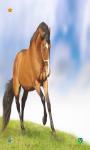 Horse Wallpapers HD free screenshot 4/6