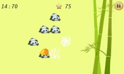 Pop The Panda screenshot 4/6