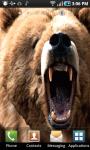 Angry Bear Live Wallpaper screenshot 1/3