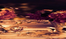 Morning Butterfly Live Wallpaper screenshot 2/3