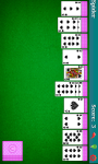 Spider Solitaire CardGame screenshot 1/3