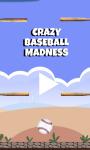 Crazy Baseball Madness screenshot 1/5