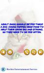Pet Tips screenshot 3/3