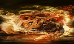 Lion In Fire Live Wallpaper screenshot 2/3