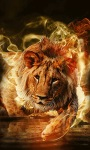 Lion In Fire Live Wallpaper screenshot 3/3