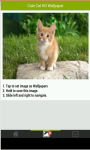 Cute Cat HD Wallpapers screenshot 3/5
