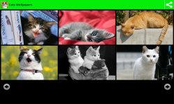 Best Cats Wallpapers screenshot 1/6