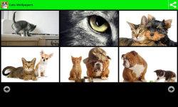 Best Cats Wallpapers screenshot 2/6