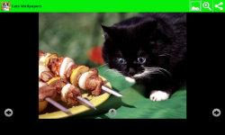 Best Cats Wallpapers screenshot 5/6