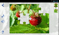 Jigsaw Puzzles: Nature screenshot 2/6