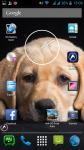 Dog Photography screenshot 6/6