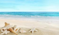 Beautiful Pictures of Summer Beach HD Wallpaper screenshot 1/6
